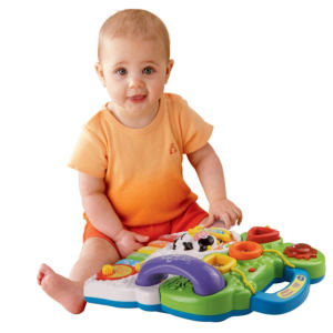 VTech Sit-to-Stand Learning Baby Walker toys
